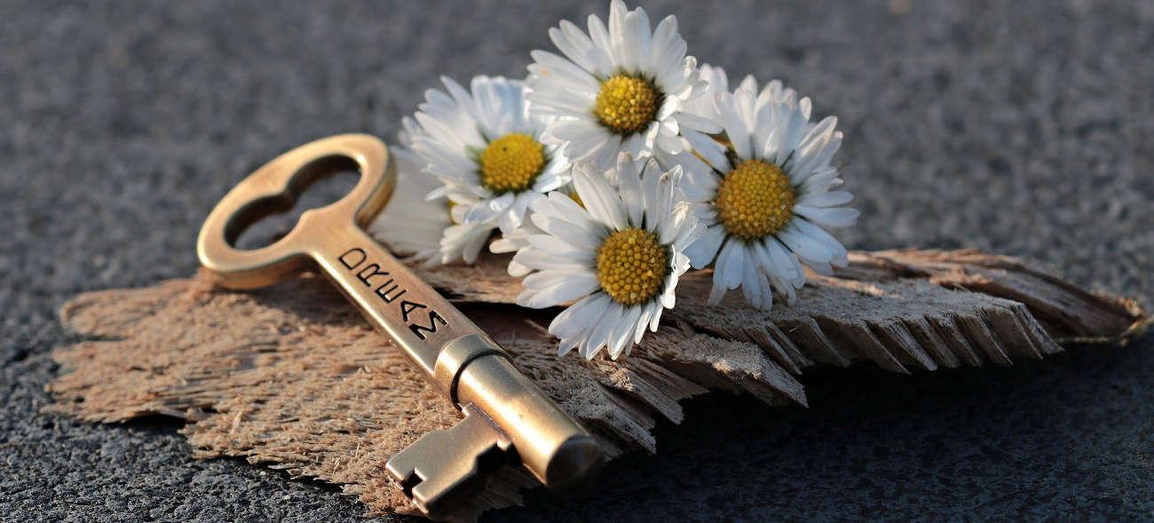 Neben einem kleinen Strauß Gänseblümchen liegt der Schlüssel zu deinem Erfolg.