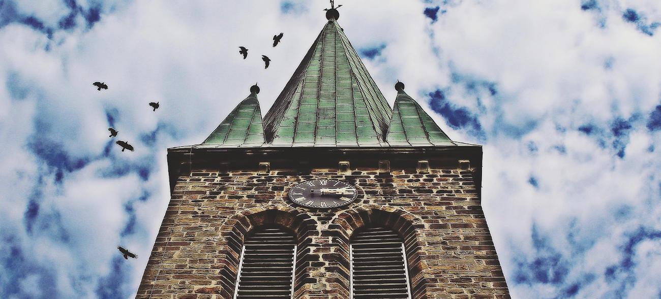 Carla möchte hoch hinaus: zu den Vögeln auf die Kirchturmspitze